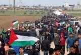 مسيرات العودة (4) غزة أيقونة الثورة